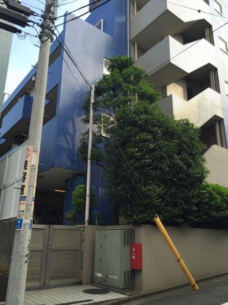 シテリオ渋谷松濤