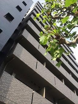 ルーブル三田の外観・共有部画像です